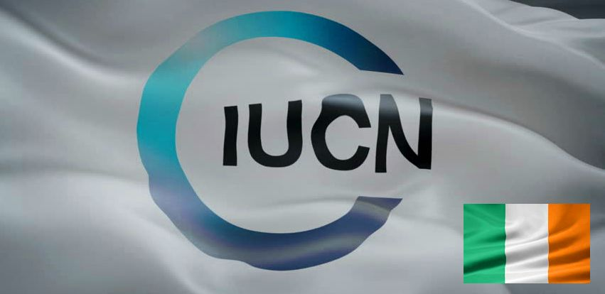IUCN & Ireland flags