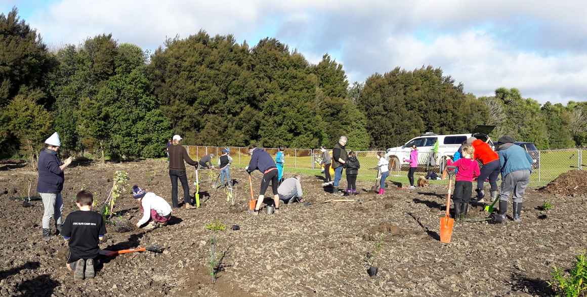 Volunteers planting natives at Ngā Puna Wai.