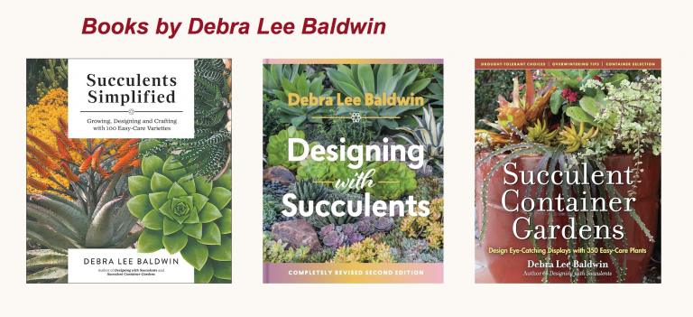 Books by Debra Lee Baldwin