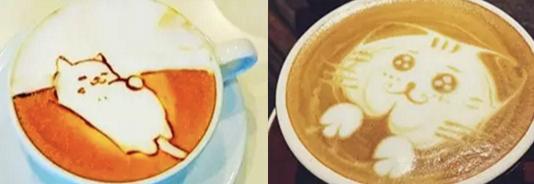 Cat cafe.